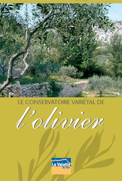 Couverture Le conservatoire variétal de l'olivier
